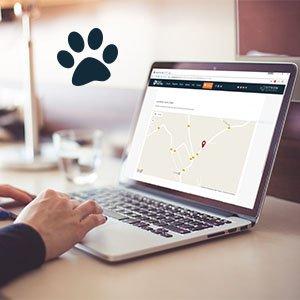 ordinateur localisation chien